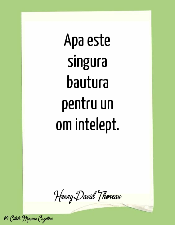 Citate despre Om - Henry David Thoreau